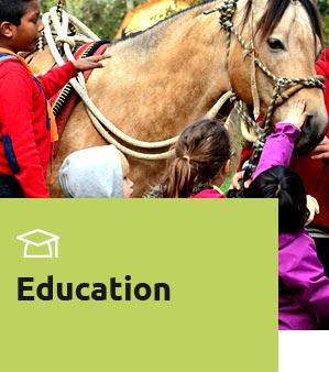 bloc-education-2